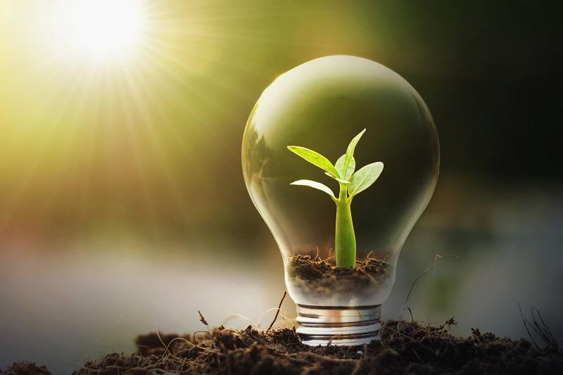 Doładowanie energii przez Internet – nowoczesne i wygodne rozwiązanie