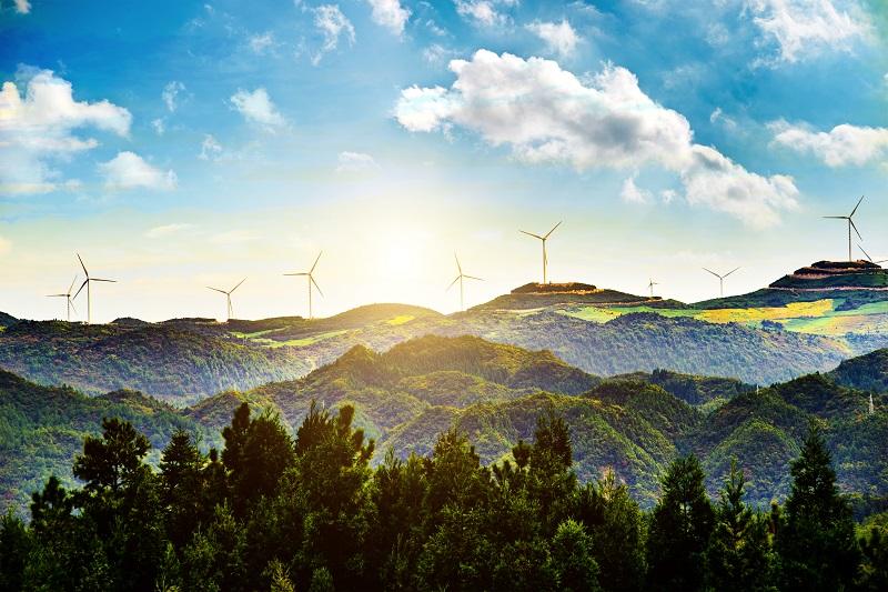 Odnawialne źródła energii – dlaczego obecnie to konieczność, w którą warto zainwestować?